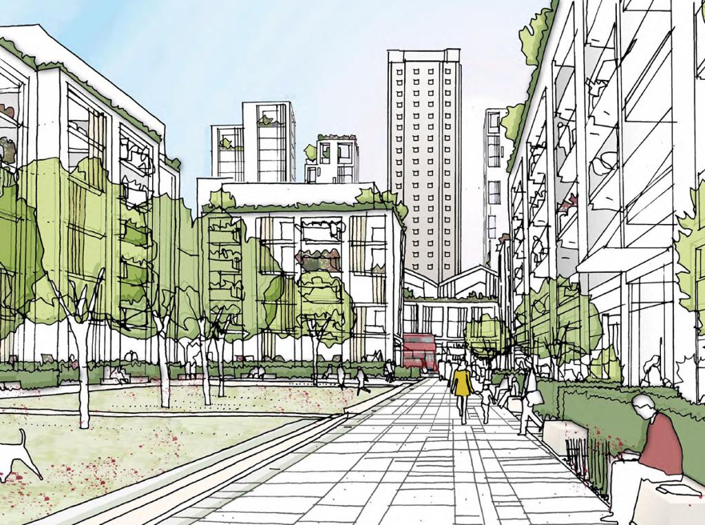 Town Improvement Plans Unravelled
